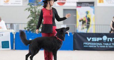 GPF Dog Dancing les 4 et 5 août 2018 en Alsace