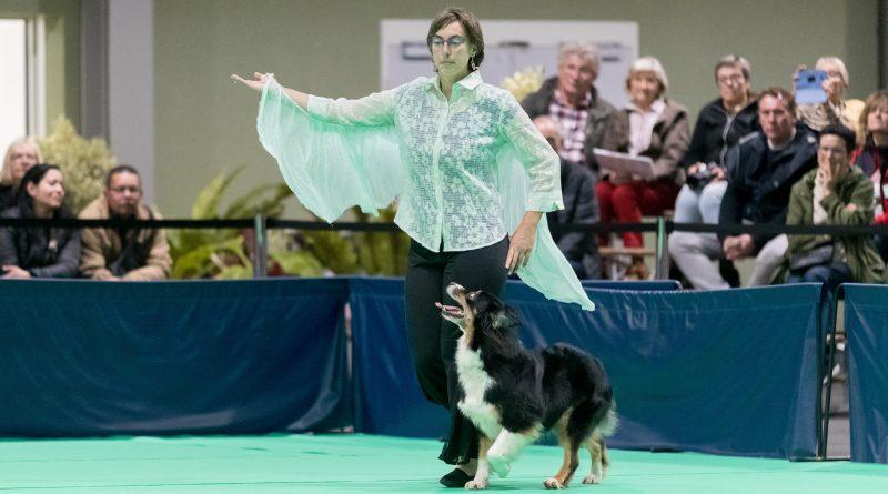 GPF Dog Dancing 2019